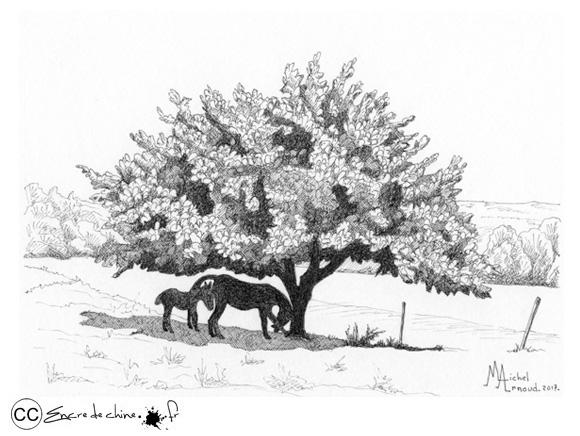 Domaine des Usses - Cernex